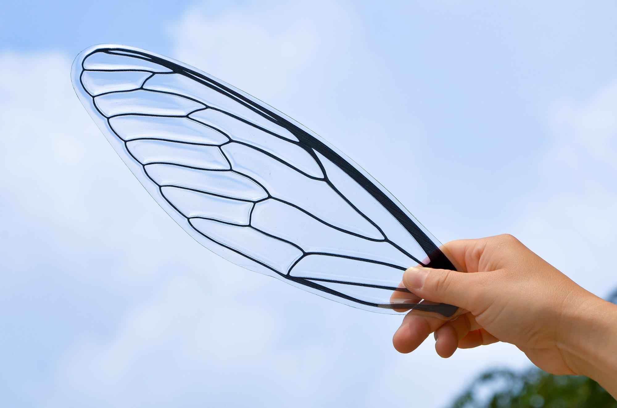 セミの翅の形をしたうちわ!?薄くてきれいに透き通っているのに耐久性もある!