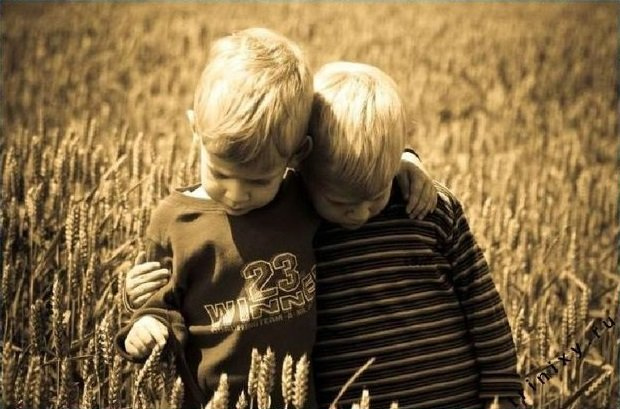 дружба в нашей жизни картинки комплектация удовлетворит