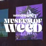 Image for the Tweet beginning: The #MuseumofWeed opens Saturday, August