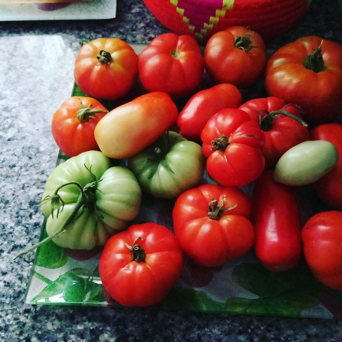 Los primeros tomates del huerto!! ❤️✨💃#delicious #tomate #realfood #verduradetemporada #verdurafresca #licopeno #comomevoyaponer