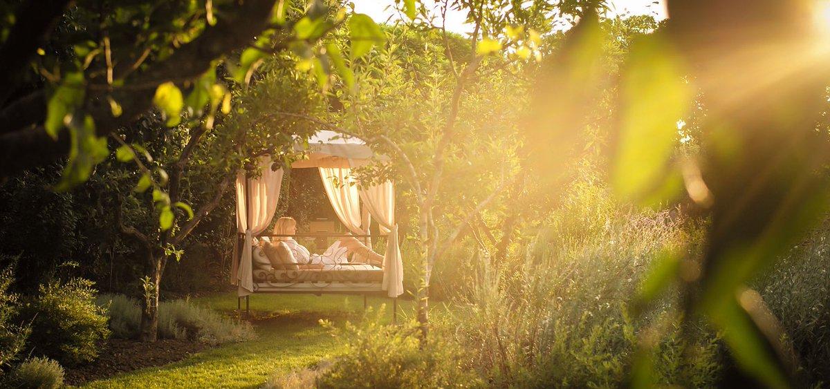 картинка кровать в лесу когда-то