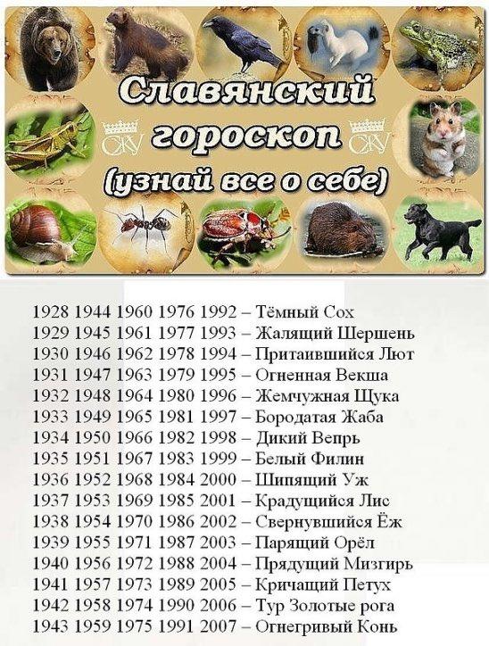 Славянский календарь в картинках звери, привет