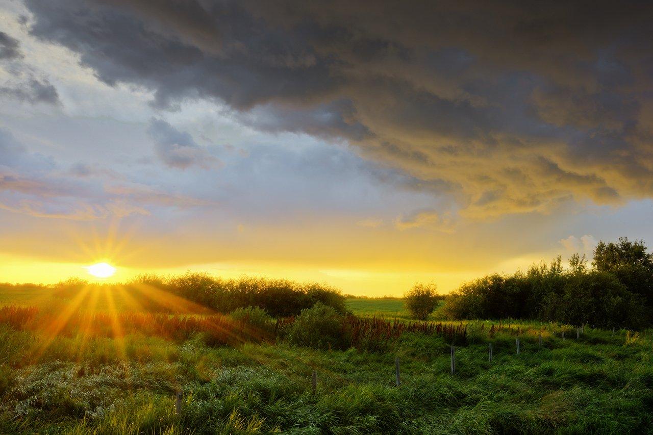 солнечный рассвет фото амбициозный