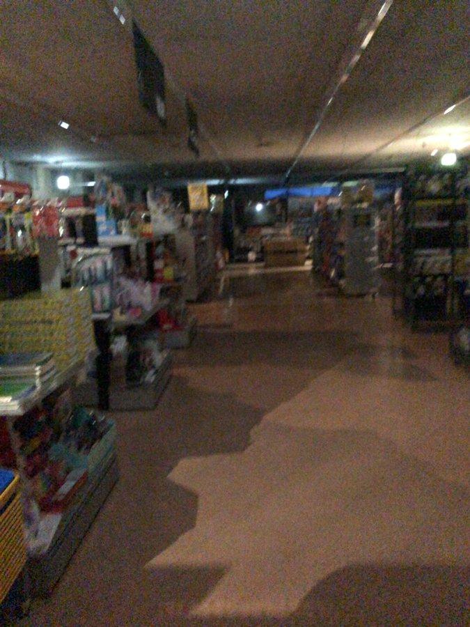 栃木市、佐野市、下野市で大規模停電が発生した現場の画像