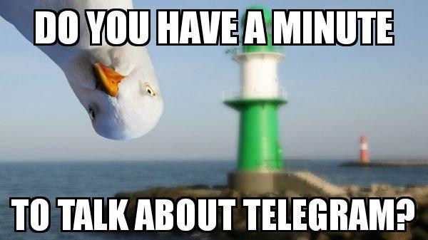 Telegram Messenger (@telegram) | Twitter