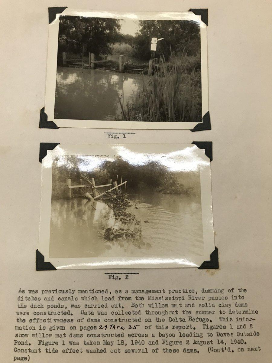 buy kunst und religion der mayavölker ii die copaner denkmäler 1931