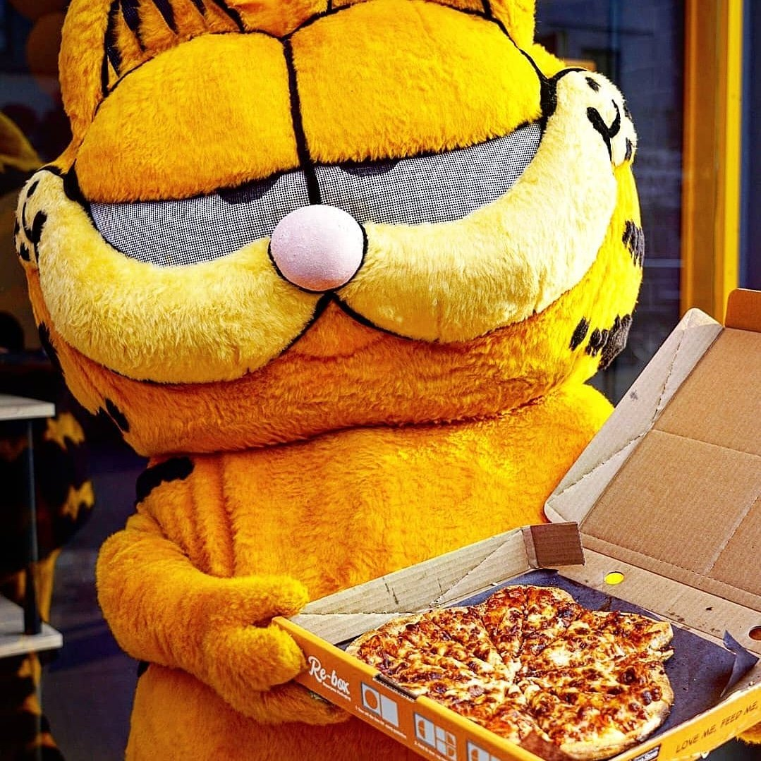 Garfieldeats On Twitter If You Don T Order Garfield Will Eat His Tasty Pizza Face Use G Code First50 Off On Your 1st Order Download Garfieldeats Canada App Only In Toronto Pick Up Or Delivery Https T Co Mz0c9pcyfl