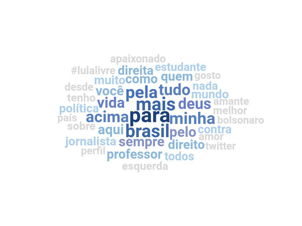 Essa foi a nuvem da bio dos publicadores #AgoraFalaBolsonaro
