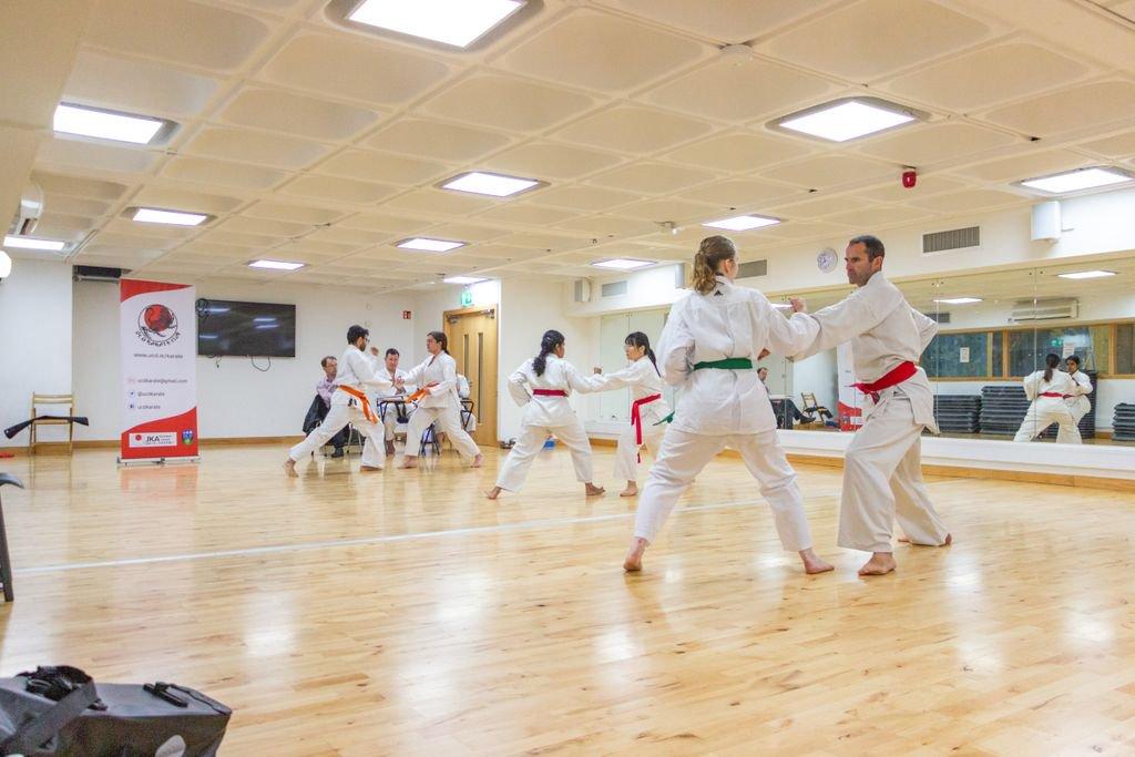 UCD Karate (@UCDKarate) | Twitter
