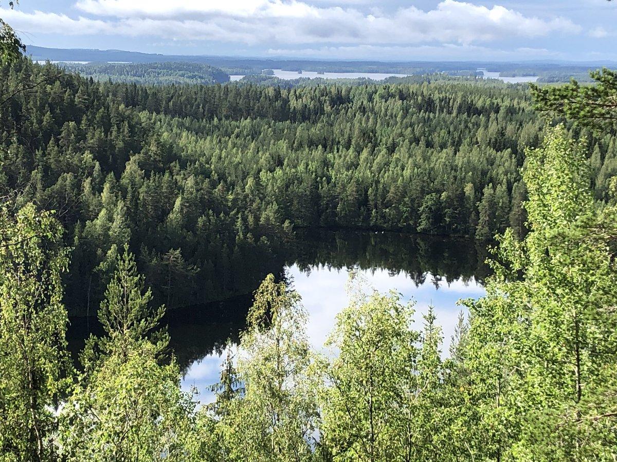 WRC: NESTE Rally Finland [1-4 Agosto] - Página 2 EAtO_qvX4AAnjZK
