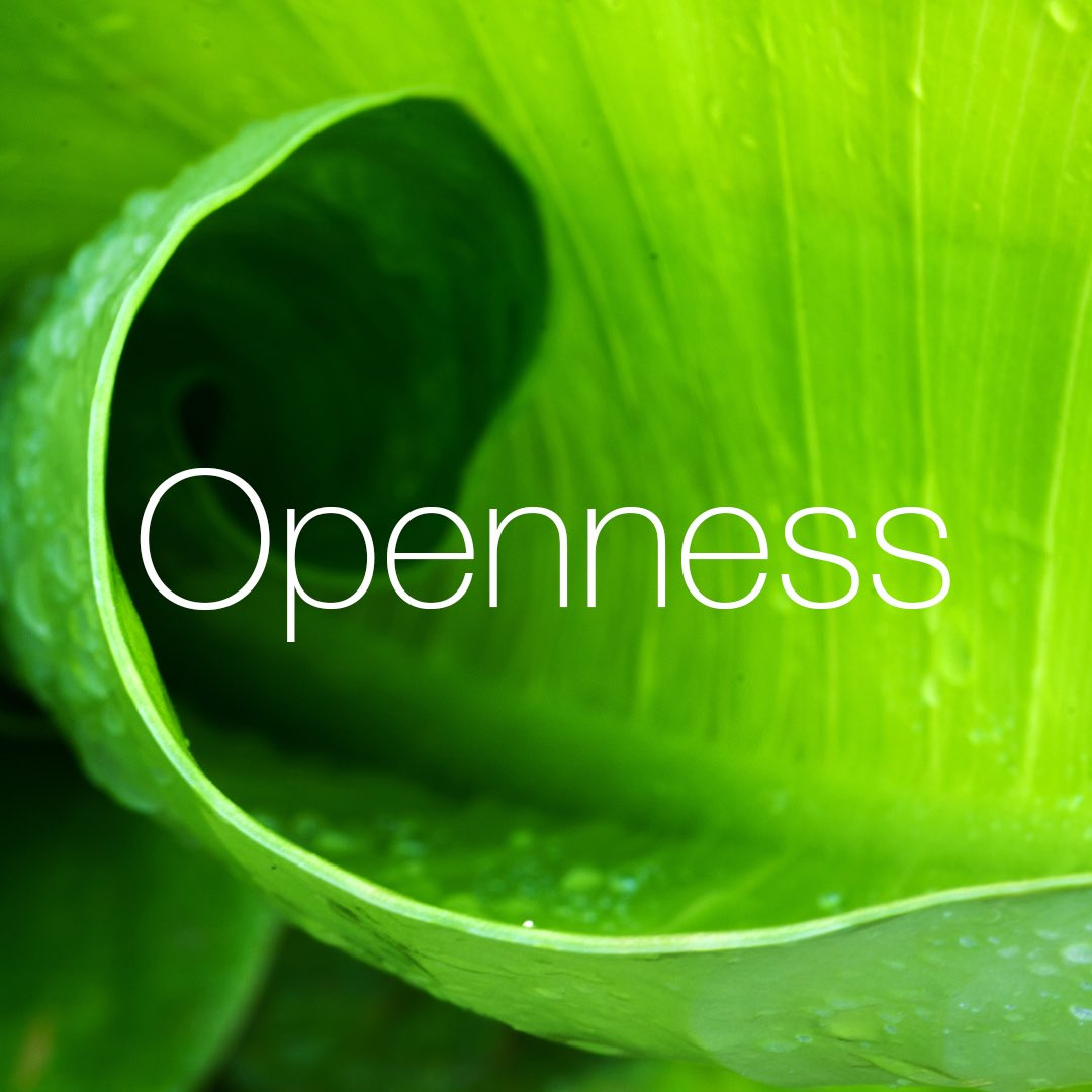 Openness – listen, be receptive and share #openness #values #quintessence #aboveandbeyond