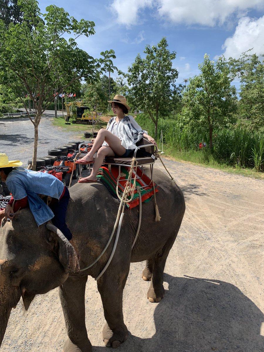 test ツイッターメディア - タイにロケが決まったとき、宇垣さんからの要望は「ゾウに乗りたい」でした。これから3号にわたり、宇垣さんのグラビアを掲載させてもらうので、不定期でオフショットもアップしていきます。 #宇垣美里 #週刊プレイボーイ https://t.co/vqjCPaAgUP