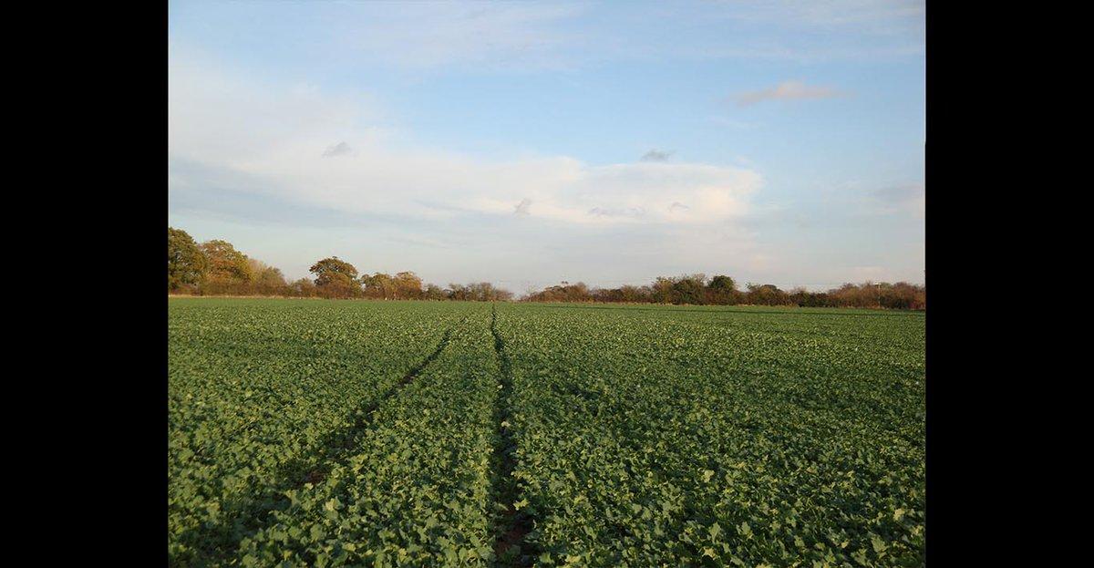 Fendt produces 250,000th Vario transmission - Tillage and Soils