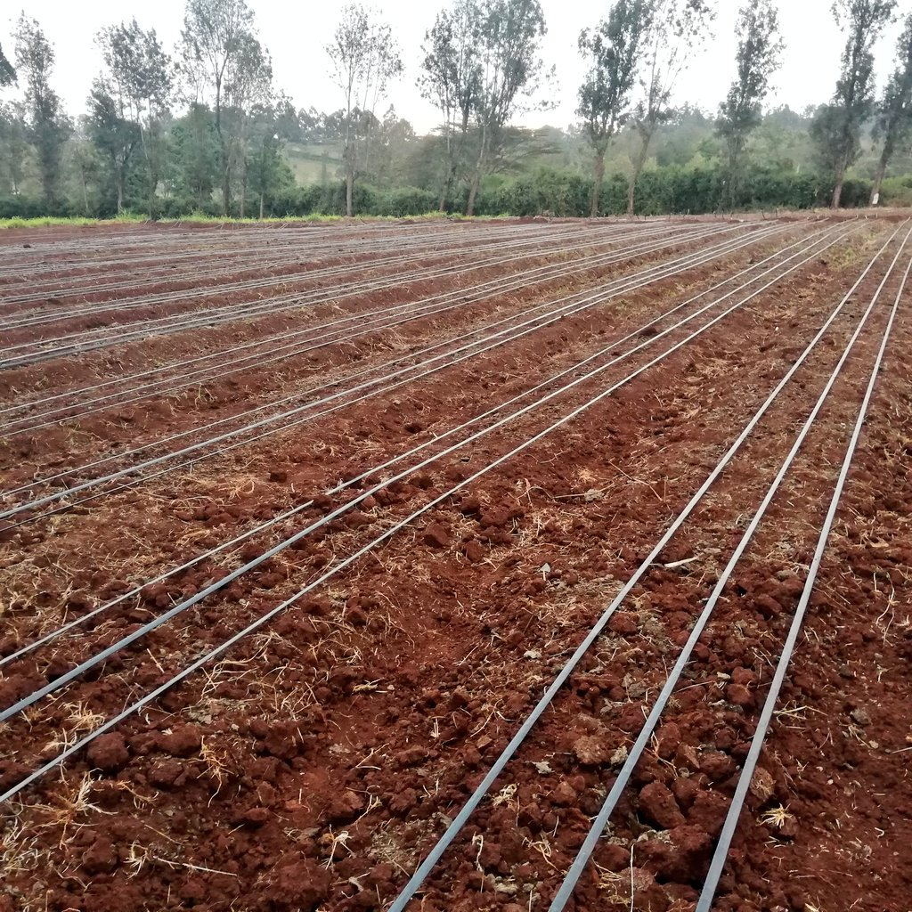 1 acre    (4096sqm)- ksh 120,000  Drips, main pipes, fittings, connectors , transport of material to site, installation with NO tank  Retweet widely  #ThursdayMotivation #KOT<br>http://pic.twitter.com/MdIgVDpFdn