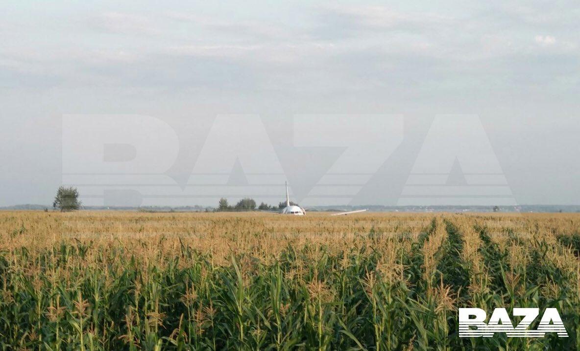 Літак, що летів до окупованого Криму, екстрено сів на кукурудзяному полі. Фото