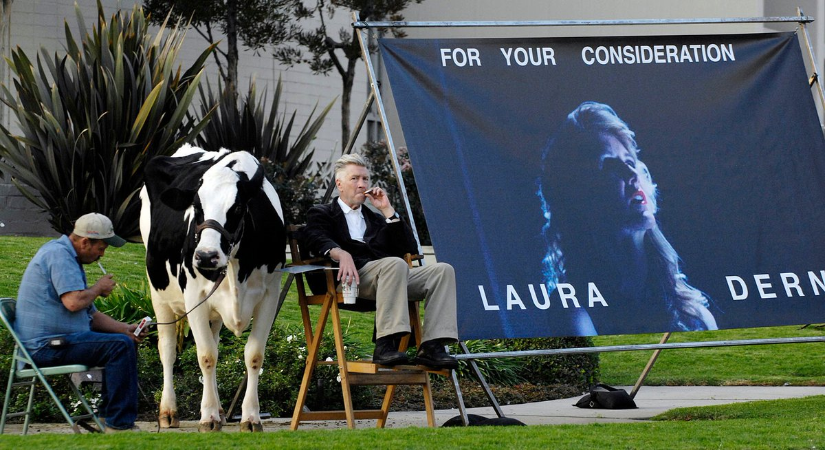david lynch campaigning for laura derns oscar nomination on a street corner with a live cow, 2006