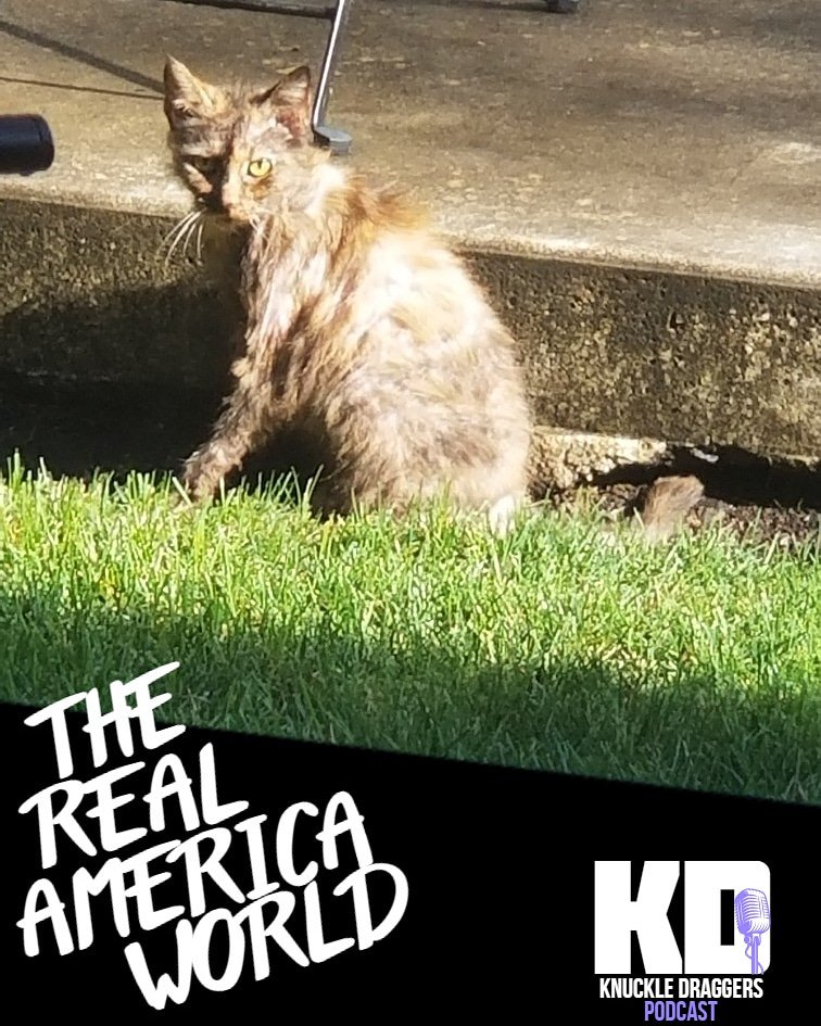 🚨 AVAILABLE NOW🚨 Episode 23: The Real America World #podcast #podcasts #new #cats #vegancat #government #conspiracy #epstein #area51 #boblazar #prison #popculture #technology #tech #vets #vetspod #usa #america #news #funny #comedy #pnw #oregon #washington #pdx #portland