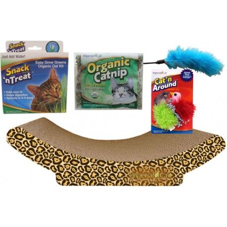 If you're bringing home a kitten for the first time, get the full setup to their new pad with the Imperial Cat Kitten Kit Gift Set.  https:// buff.ly/2YZDHB1      #newkitten #kittens #catgifts #giftsforcat #cats #CatsOfTwitter<br>http://pic.twitter.com/GMyV64mPSE