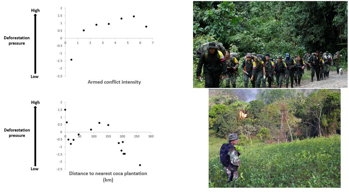 This article shows that the increase in the intensity of armed conflict and the proximity to coca plantations increases deforestation pressure in Colombia.  Amazon most affected area.  #Deforestation #Colombia
