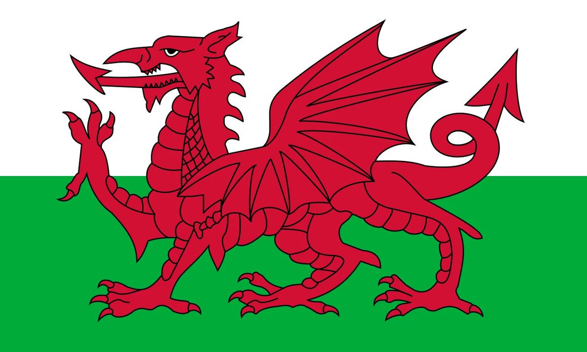 @momodraws I might be a little biased here but I think Wales have the coolest flag by a long shot 🏴󠁧󠁢󠁷󠁬󠁳󠁿