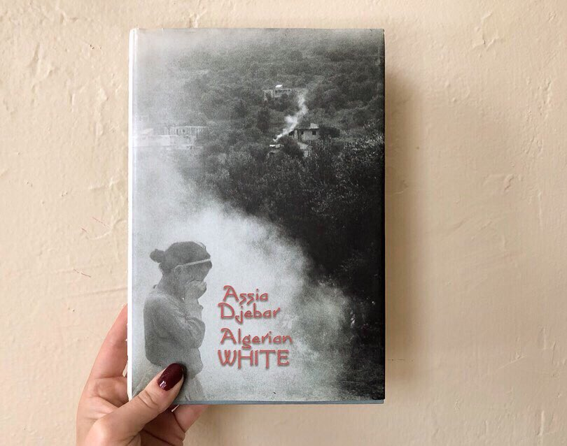 download white negritude: race, writing, and brazilian cultural