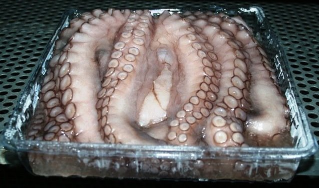 Incomparable Quality Mediterranean Octopus!!! For enquires email : contact@bluseafood.com #Wholesale #LoveSeafood #FrozenSeafood #MediterraneanSeaFood #Passionate4Fish