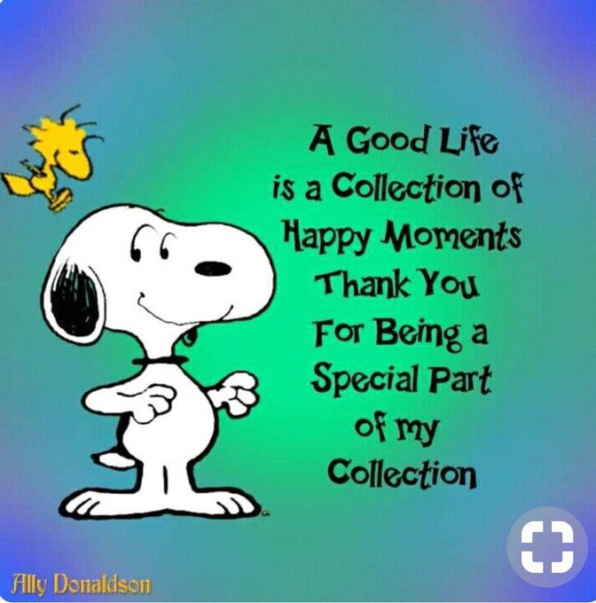 A good life is a collection of happy moments. Thank you for being a special part of my collection   #ThinkBigSundayWithMarsha #InspireThemRetweetTuesday #JoyTrain #LightUpTheLove #Love #WednesdayWisdom #ChooseLove #ShineOn #GoldenHearts  #FamilyTRAIN #StarFishClub  #Gratitude <br>http://pic.twitter.com/2fkwE19H70