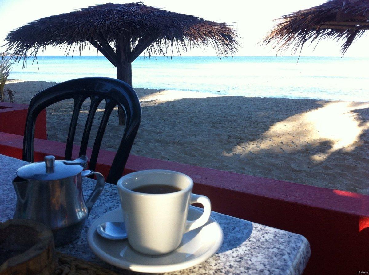 Картинки с пальмой и кофе доброе утро, открыток
