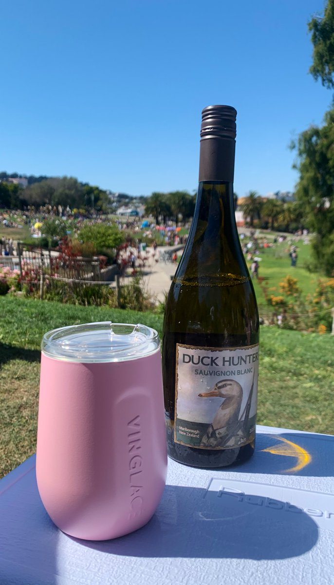 Enjoying a lovely #sauvingonblanc from #Duckhunter #newzealand! So perfect on a hot summer day in the park. Keeping it cool with my #vinglace . Isn't the pink adorable 💕#wineblog #winewinewine