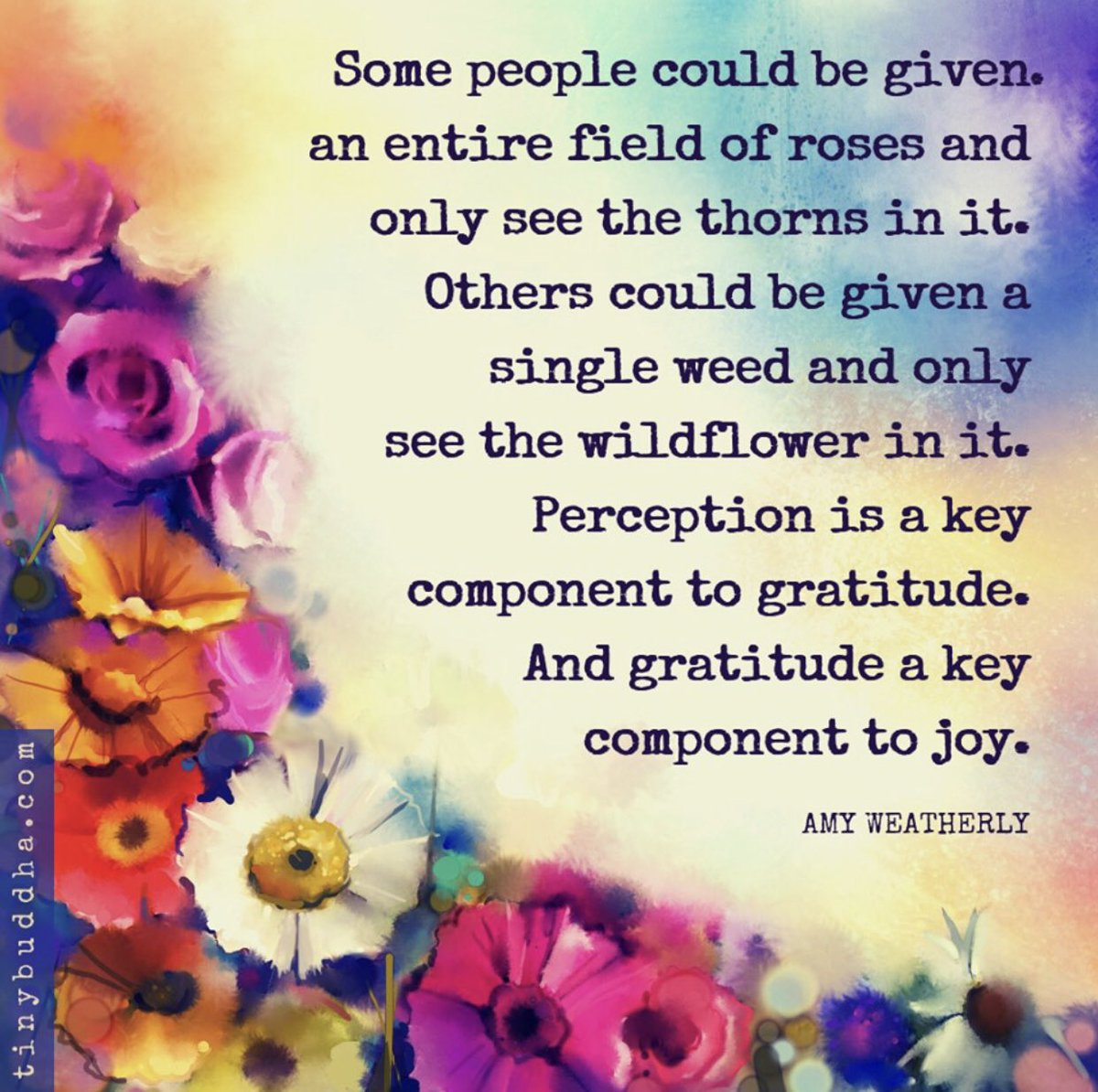 Perception. . . Gratitude. . . Joy 🥰 #LoveLiteracyLearning