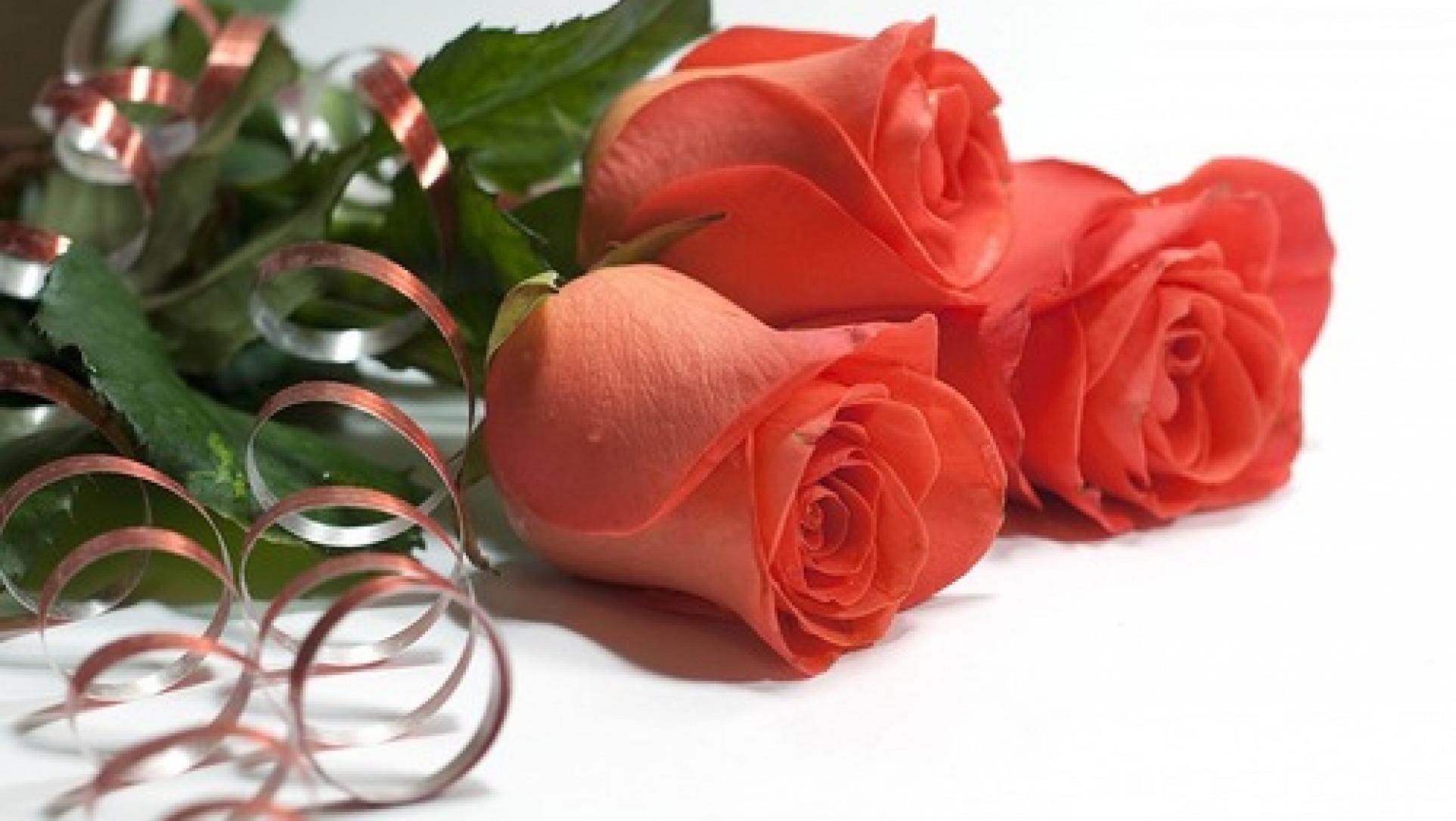 накрутить открытки с надписью роза с днем рождения качестве элемента декора