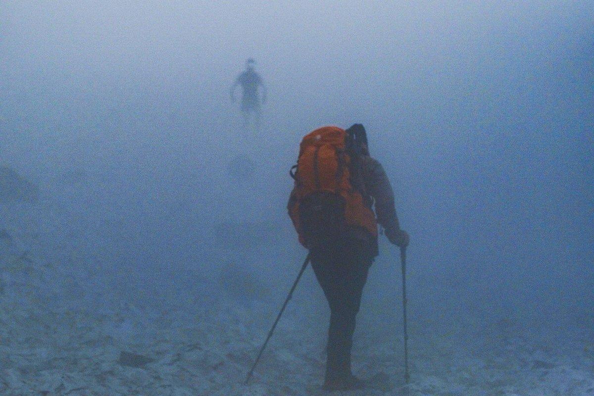 登山中、未知との遭遇って感じの写真が撮れました
