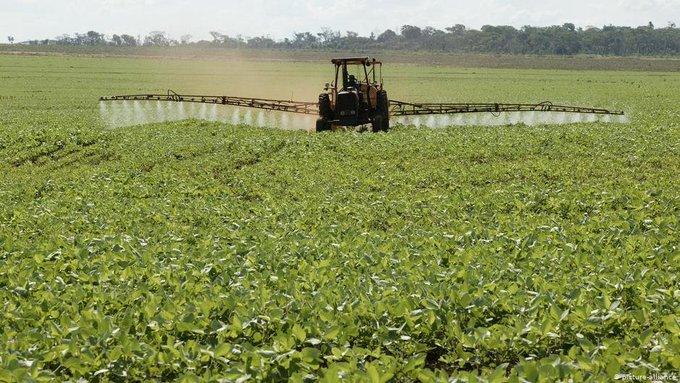 #MiguelRiglos | Vecinos reclaman más control en la utilización de agrotóxicos