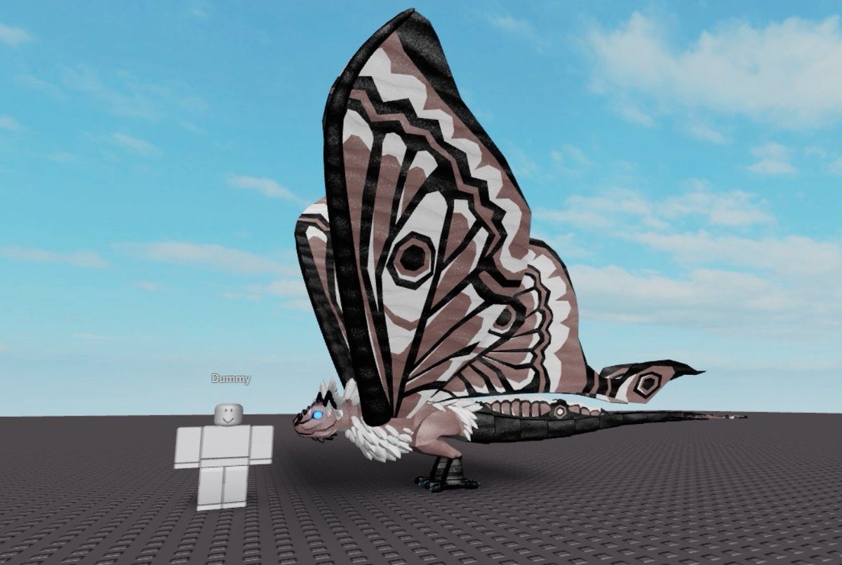 Erythia On Twitter This Winter Fae Moth Will Be Discover Able In
