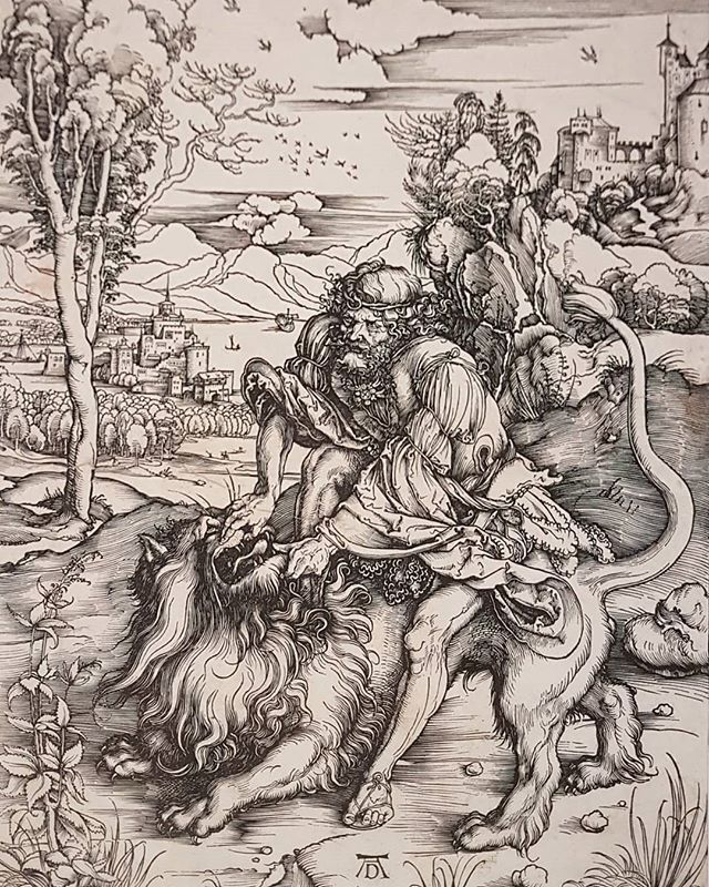#AlbrechtDürer #SamsonRendingTheLion #SamsonAndTheLion #WoodcutPrint. The work is exhibited on the show #CollezioneRemondini curated by @chiaracasar at #PalazzoSturm in #BassanoDelGrappa @museibassano https://t.co/hDDp9eVcPP
