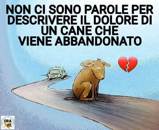 NON LI ABBANDONATE...POSSONO MORIRE DI DOLORE