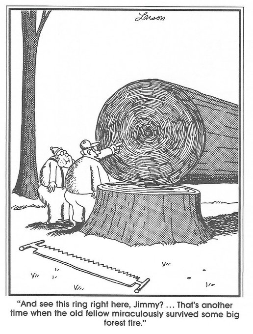 Happy birthday to Gary Larson. He has made me laugh, almost daily, for a very long time.