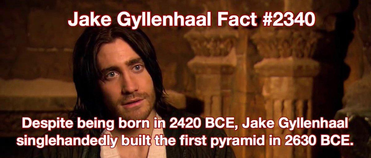 jake gyllenhaal facts (@GyllenhaalFacts) on Twitter photo 03/08/2019 00:23:23