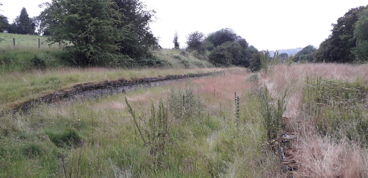 EBB8H57XYAAVrNC?format=jpg&name=medium - Sixty years since the last train to Cwm Prysor