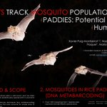 Image for the Tweet beginning: #IBRC2019 BATS TRACK MOSQUITO POPULATIONS