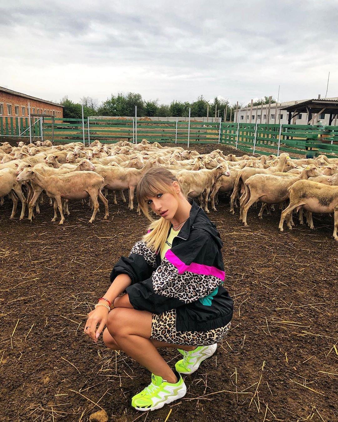 Никитюк в загоне с овцами
