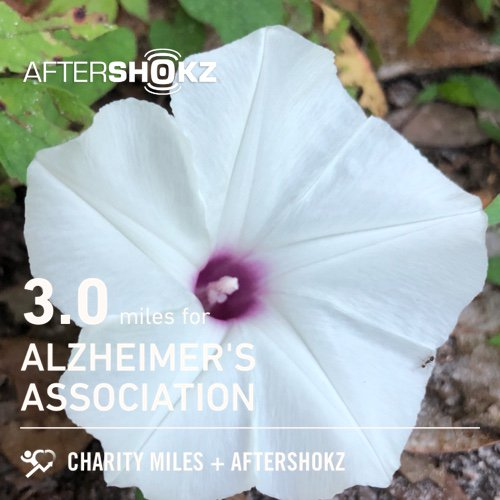 Heartsick. Heart...lost. 3.0 @CharityMiles for @alzassociation. Thx @Aftershokz for sponsoring me.