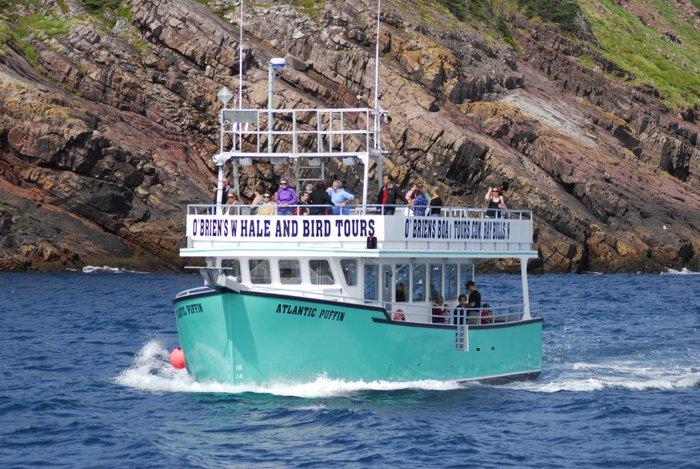 O'Brien's Boat Tours (@obrienstours) | Twitter
