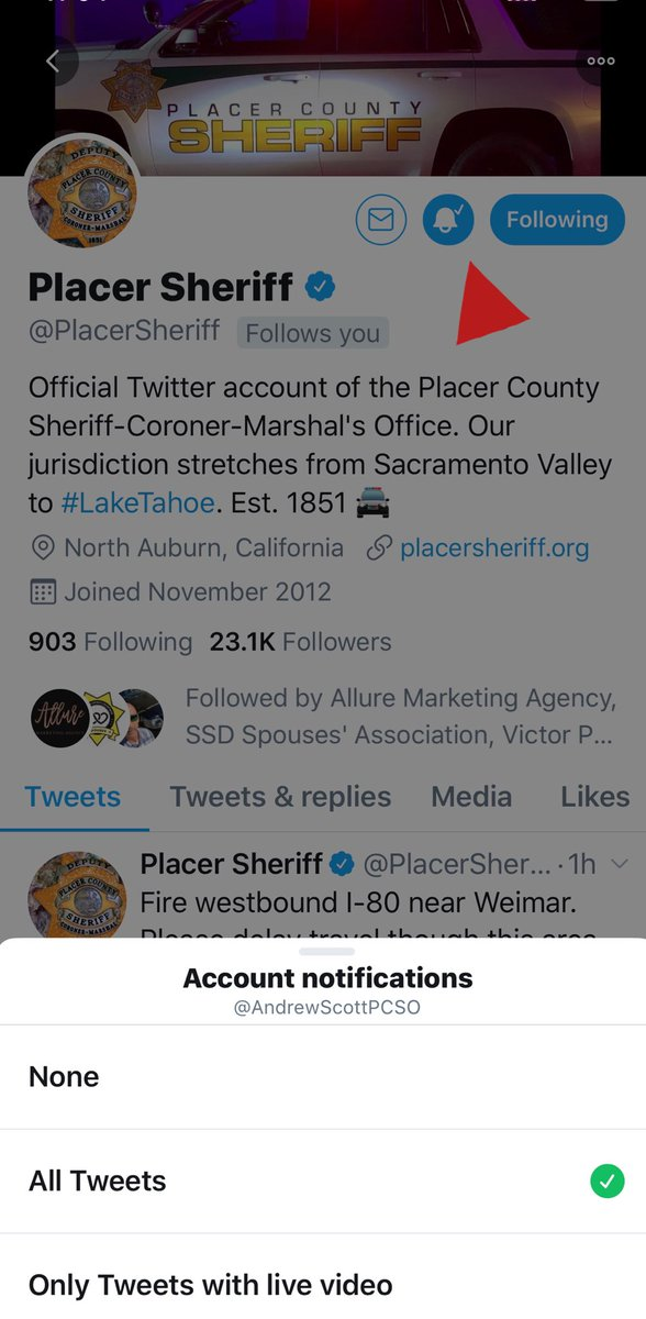 Placer County, CA Sheriff Inmate Locator | People Lookup