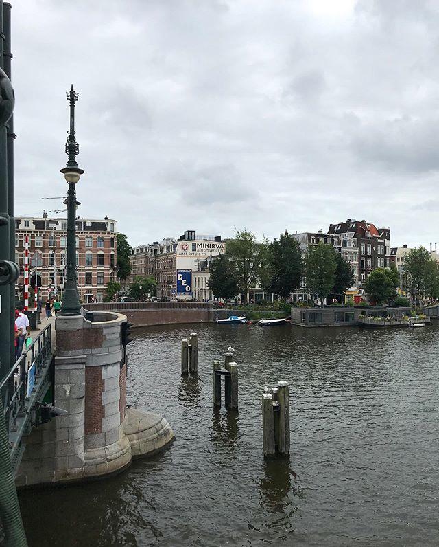 A little less than a year later . . . . . . #shotoniphone #panorama #vsco #VSCOcam #vscoamsterdam #believeiniphone #amsterdam #nederland #netherlands #sliidr #gbox #waterkant https://ift.tt/31nazS2pic.twitter.com/Ohqm6f34Nr