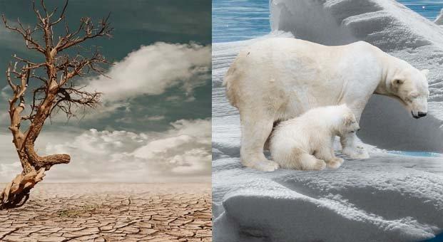 Alarko Carrier'ın 6. Küresel İklim Değişikliği Fotoğraf Yarışması başladı