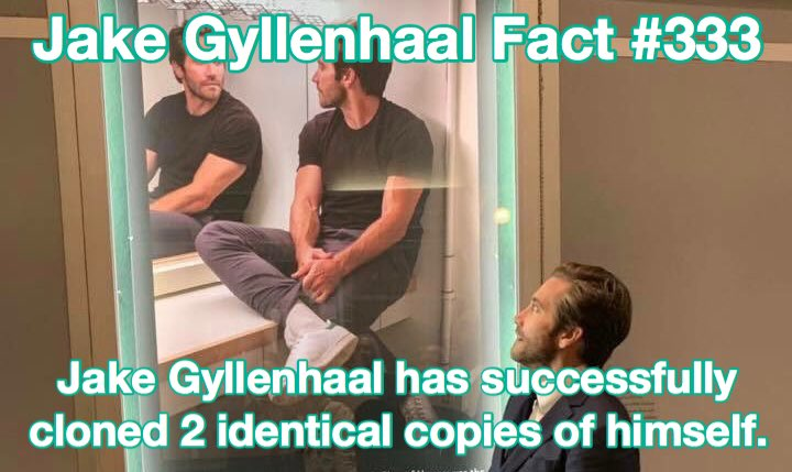jake gyllenhaal facts (@GyllenhaalFacts) on Twitter photo 06/08/2019 04:37:21