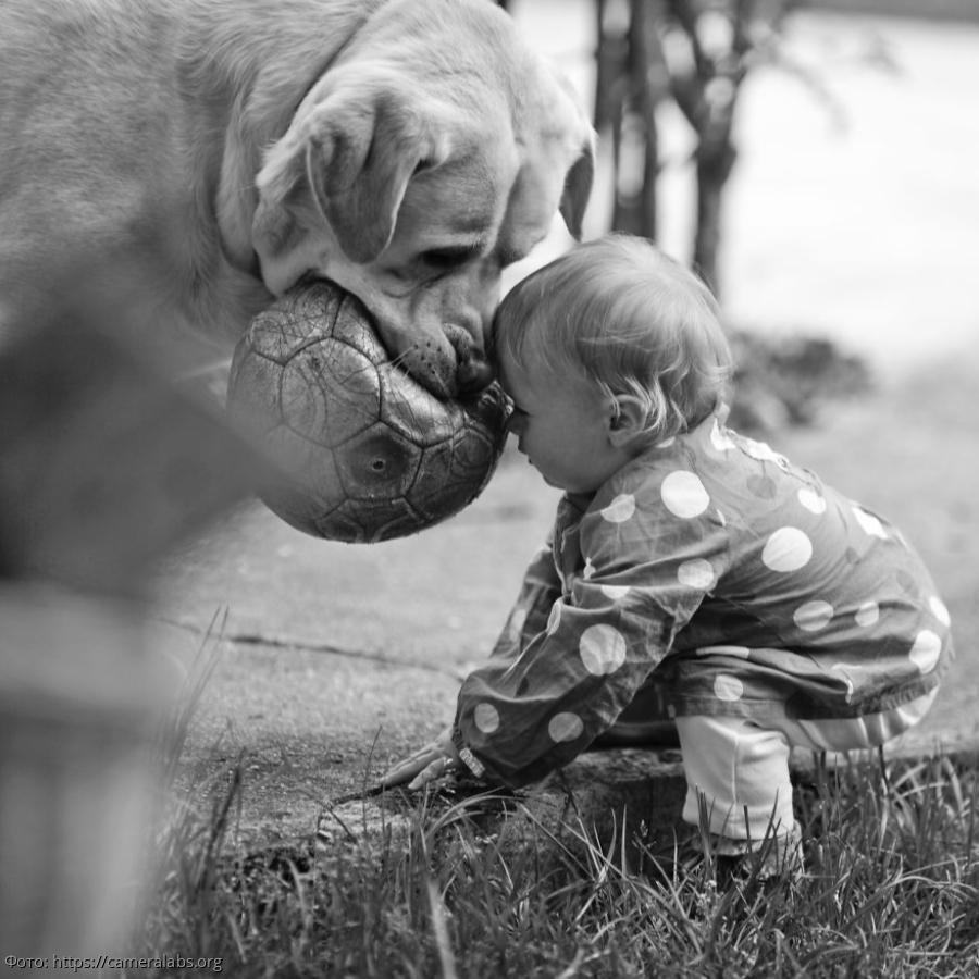 Трогательные картинки с детьми, мая картинках