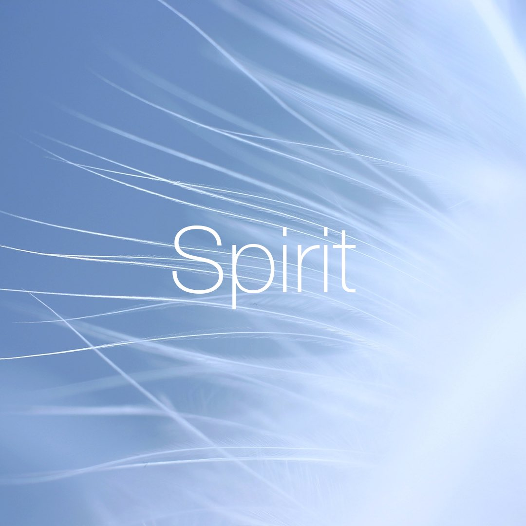 Spirit – our irresistible life force #spirit #values #quintessence #aboveandbeyond
