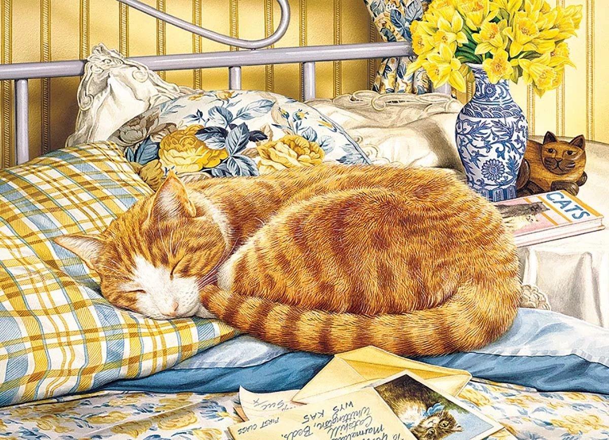 Шаблоны, картинки спокойной ночи с котами в кровати